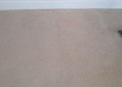 Carpet Kleen11