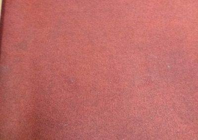 Carpet Kleen13