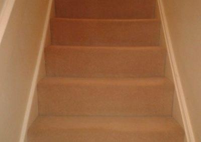 Carpet Kleen15