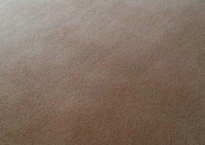 Carpet Kleen27