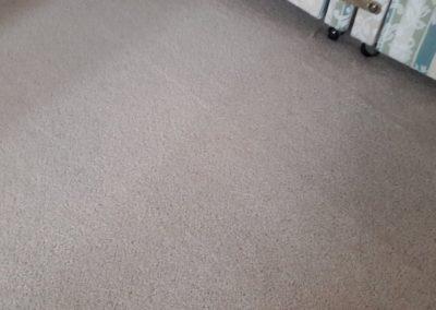 Carpet Kleen3