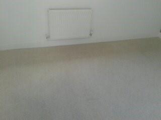 Carpet Kleen5